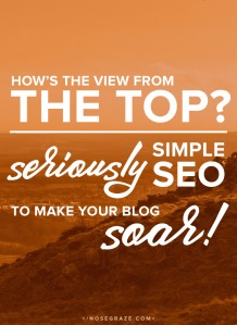 seriously-simple-seo