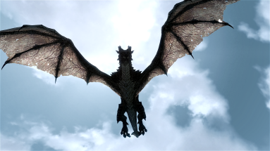 This is NOT my dragon.