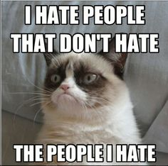 00 hate cat 4.jpg