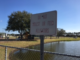 00 do not molest alligators.JPG