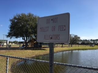 00 do not molest alligators.JPG