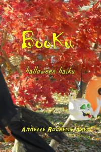 Booku_Cover_for_Kindle