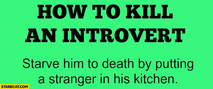 how-to-kill-an-introvert-starve-him-to-death-by-putting-a-stranger-in-his-kitchen