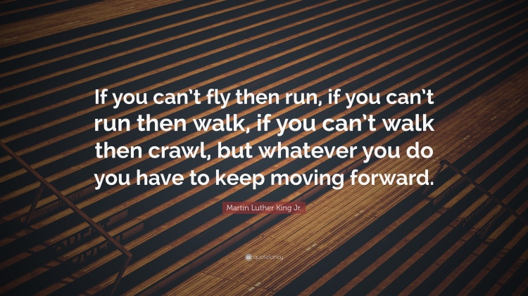 6361016-Martin-Luther-King-Jr-Quote-If-you-can-t-fly-then-run-if-you-can-t