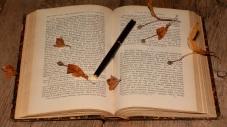 book-613637